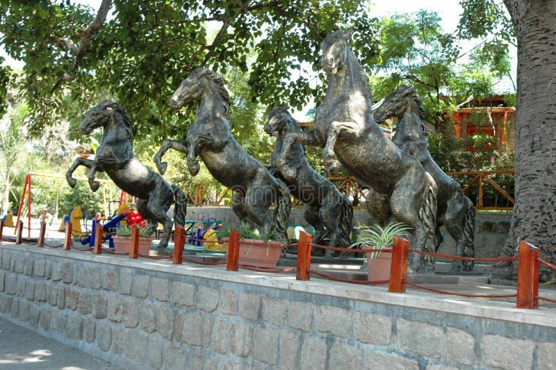 Paardstandbeelden in een Ethiopische toevlucht, royalty-vrije stock foto's