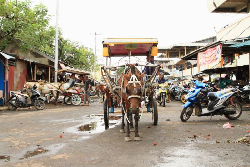 Paardvervoer in Manado royalty-vrije stock afbeelding
