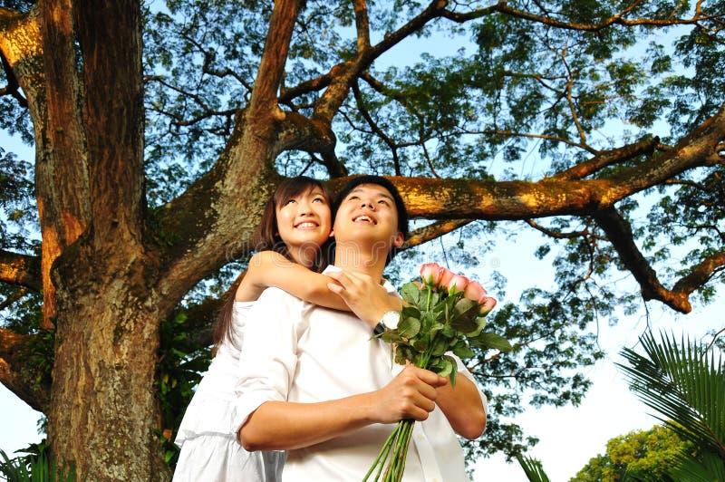 Paare in der Liebe im Park stockfotografie