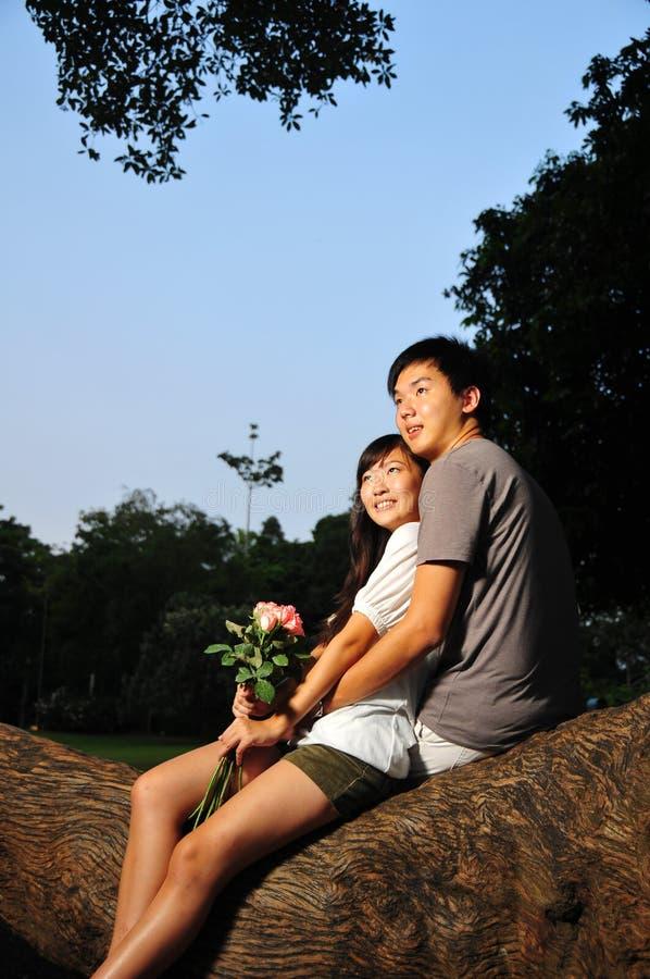 Paare in der Liebe im Park lizenzfreies stockfoto