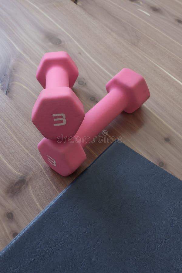 Paare der weichen rosa Handgewichte mit blauem Zeitschriften- und Holzkornhintergrund, helle weibliche Töne, Kopienraum lizenzfreie stockfotografie