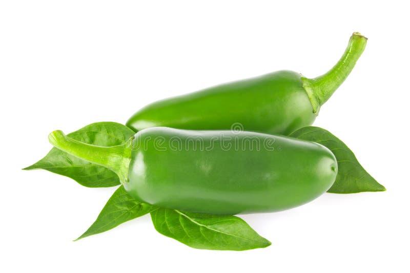 Paare des frischen organischen Jalapenopaprikapfeffers mit grünen Blättern lizenzfreies stockfoto