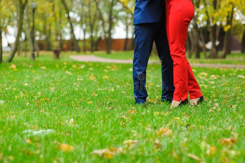 Paare, die auf einem grünen Rasen umfassen stockfoto
