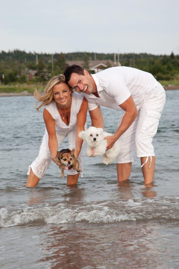 Paare, die Hunde über Wasser halten stockbilder