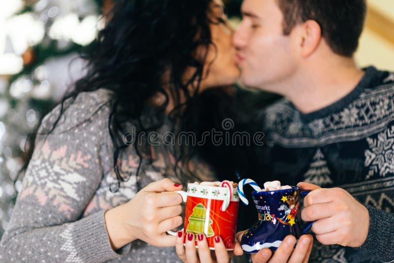 Paare, die mit Eibischschalen der Weihnachtsheißen Schokolade küssen lizenzfreies stockfoto