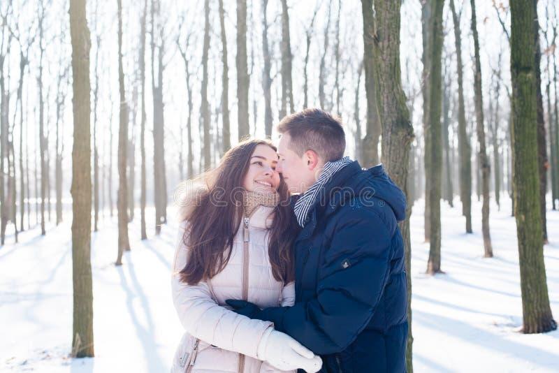 Paare, die Spaß im schneebedeckten Park haben stockbild