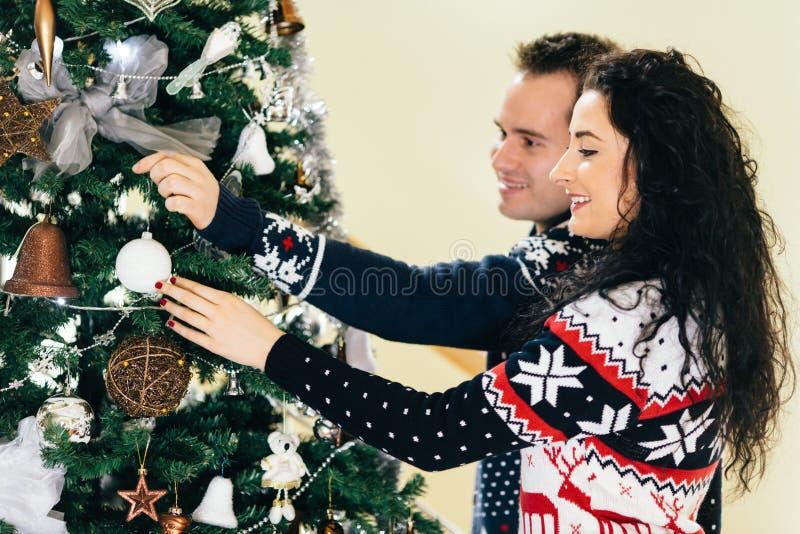 Paare, die Weihnachtsbaum verzieren lizenzfreie stockbilder