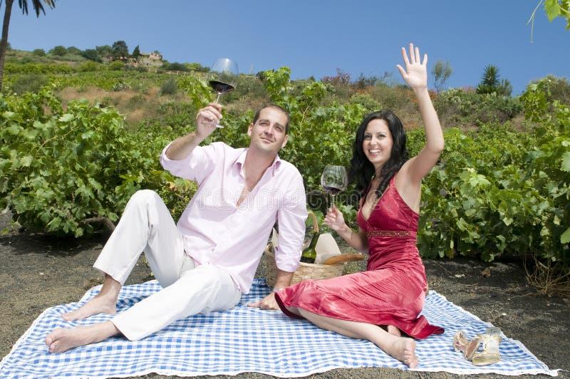 Paare in einem Picknick in einem Weinbergprobieren wine lizenzfreie stockfotografie