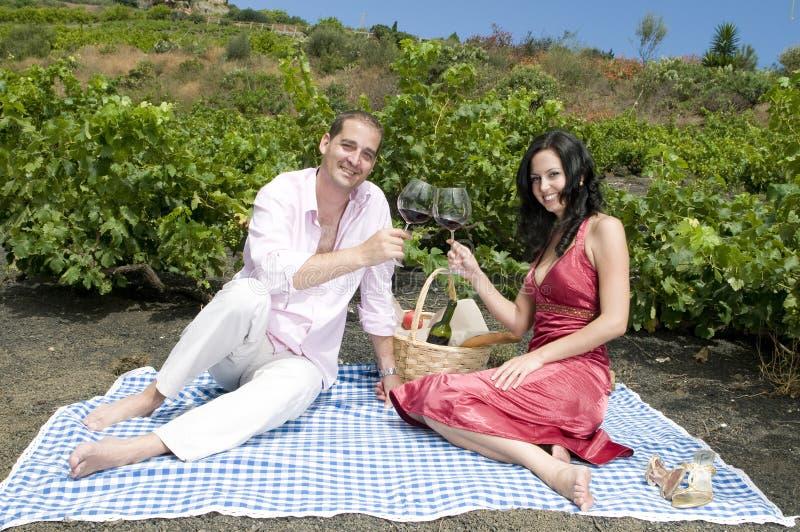 Paare in einem Picknick in einem Weinbergprobieren wine lizenzfreies stockfoto