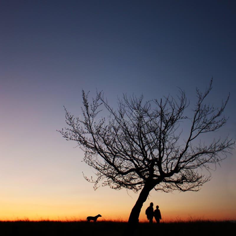 Paare silhouettieren in der Sonnenuntergangleuchte lizenzfreies stockbild
