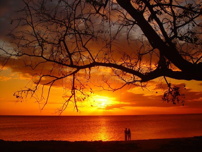 Paare am Sonnenuntergang stockfotos