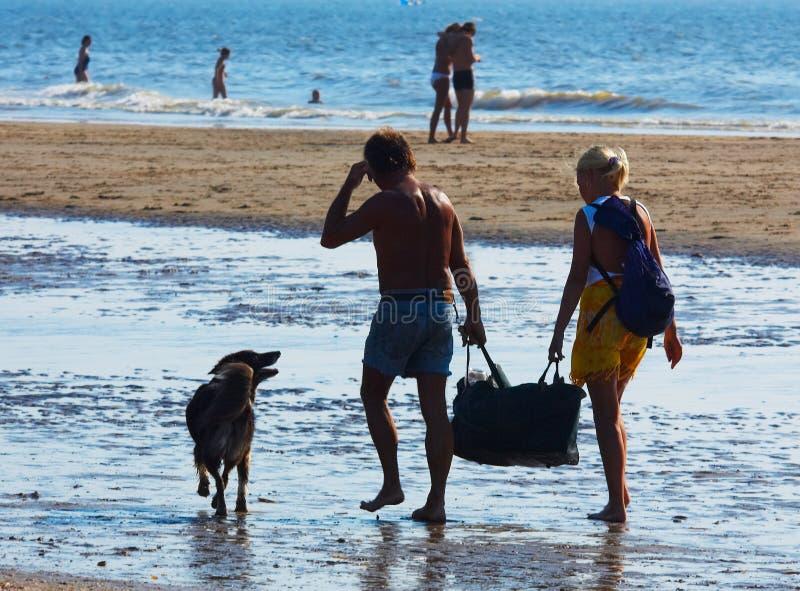 Paare am Strand stockbild