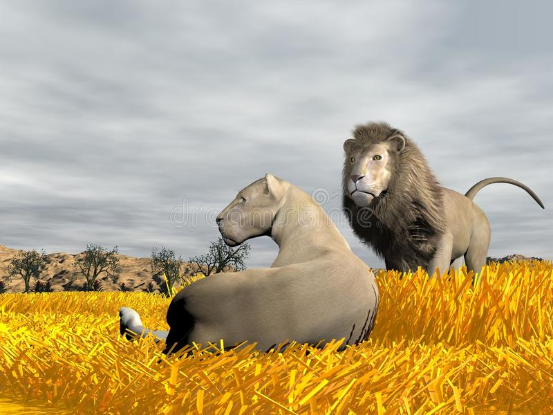 Paare von Löwen in der Savanne - 3D übertragen lizenzfreie abbildung
