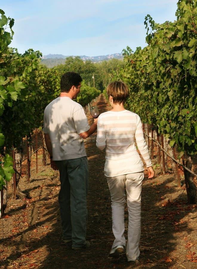 Paare am Weinberg stockfoto