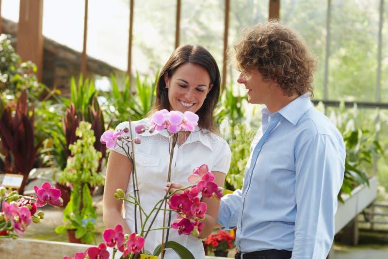Paareinkaufen in der Gartenmitte stockfotografie