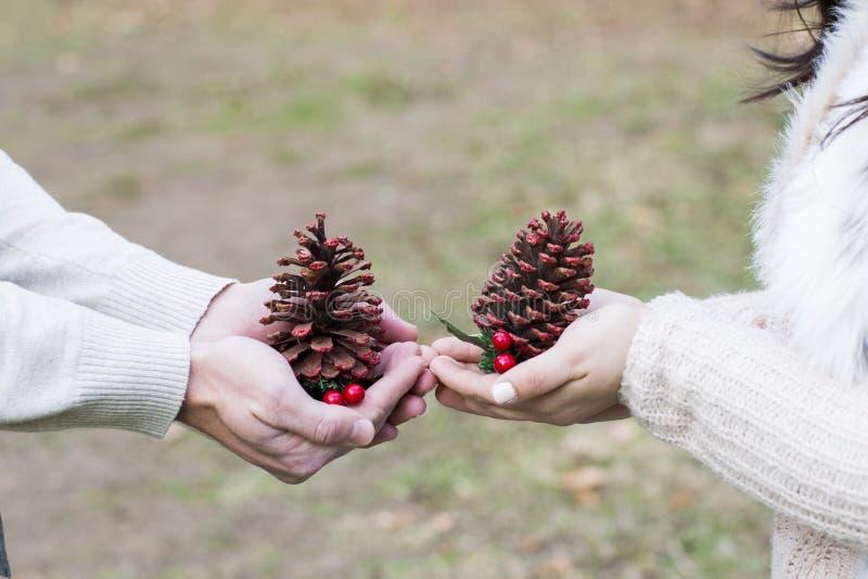 Paarliefde, die het Kerstmisseizoen vieren stock foto