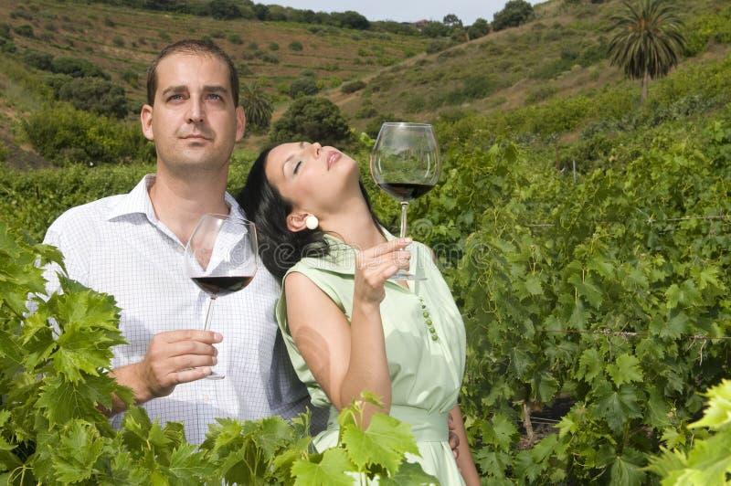 Paarprobierenwein in einem Weinberg stockbild