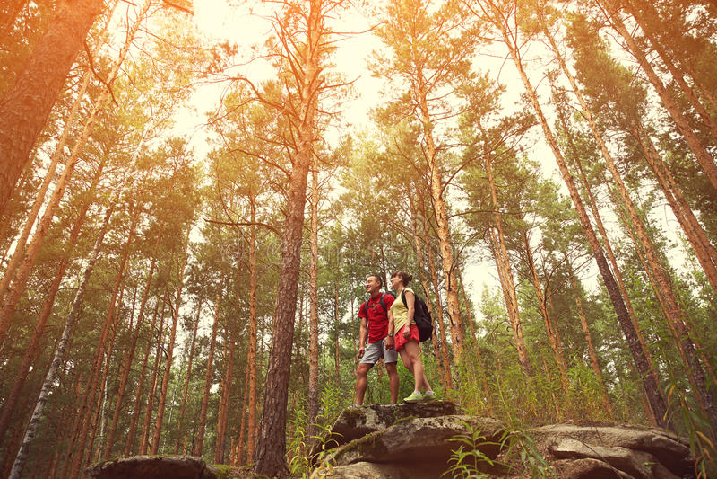 Paarwandelaars in bos royalty-vrije stock afbeelding