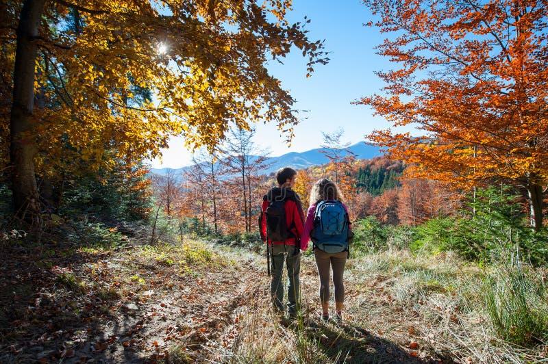 Paarwandelaars die van mooi landschap op vallei genieten stock fotografie