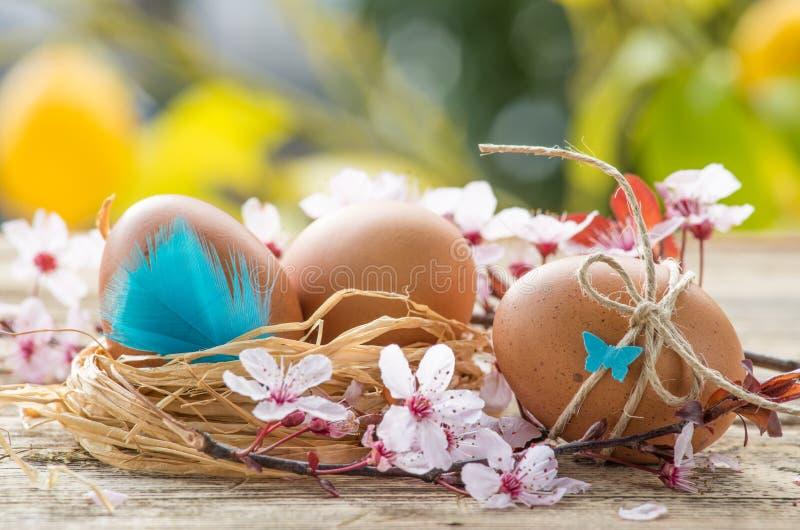 Paasei en de lentebloemen stock afbeeldingen