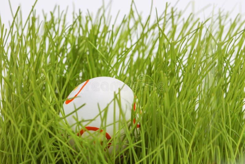 Download Paasei in gras stock afbeelding. Afbeelding bestaande uit sinaasappel - 39105003