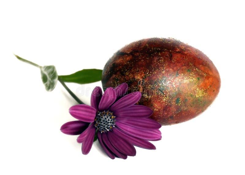 Paasei met de lentebloem royalty-vrije stock afbeelding