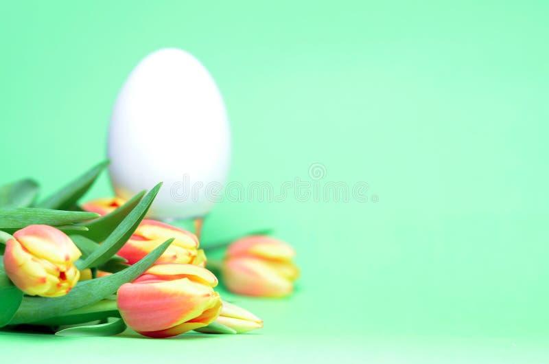 Paasei met tulpen royalty-vrije stock foto