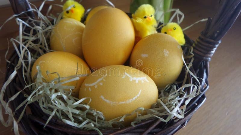 Paaseieren door kippen in de mand worden verfraaid die royalty-vrije stock afbeelding