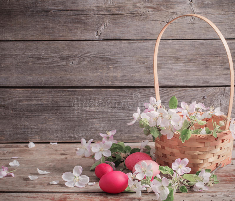 Paaseieren en appelbloemen royalty-vrije stock afbeelding