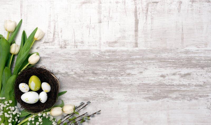 Paaseieren en bloemenachtergrond stock afbeeldingen