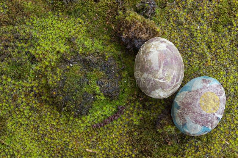 Paaseieren op mos stock afbeeldingen