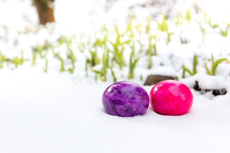 Paaseieren in sneeuw royalty-vrije stock afbeelding