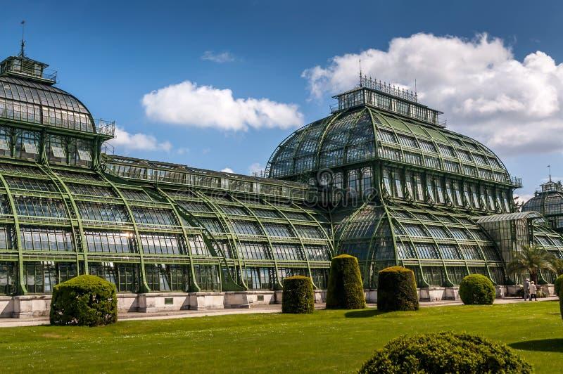 Pabellón de la palma del palacio de Schonbrunn fotografía de archivo libre de regalías