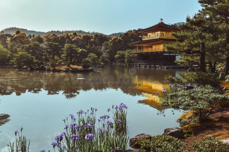 Pabellón de oro Kinkakuji en el lago durante la primavera en Kyoto Japón fotos de archivo libres de regalías