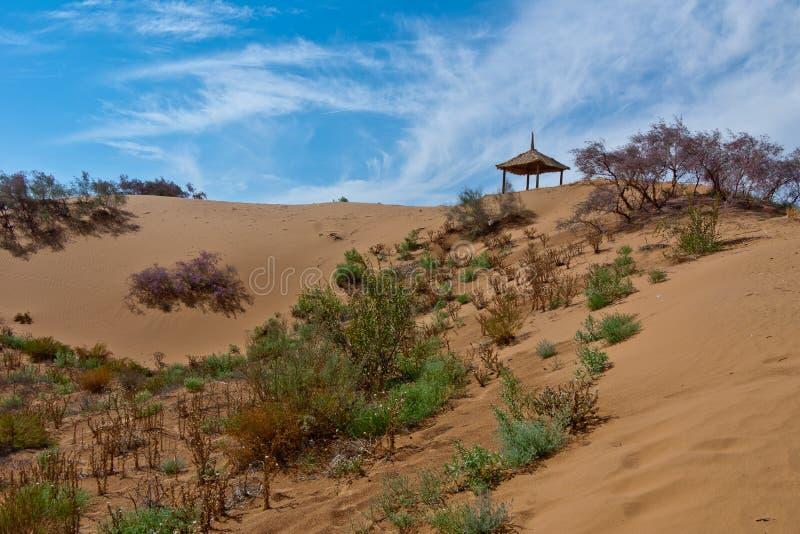 Pabellón en desierto imagenes de archivo