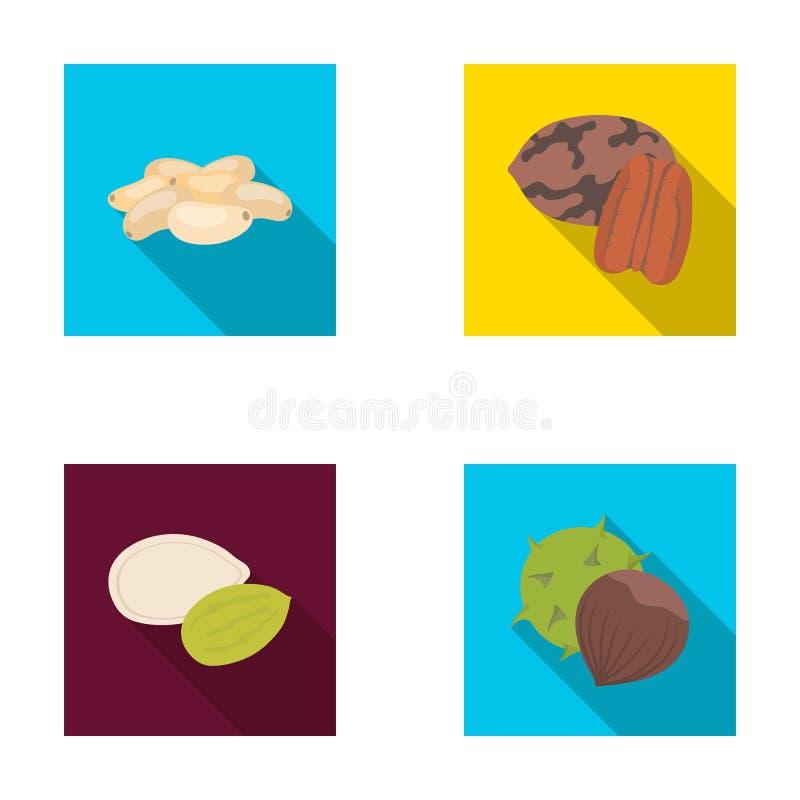 Pacana, nuez de pino, semillas de calabaza, castaña Diferentes tipos de iconos determinados de la colección de las nueces en la a libre illustration