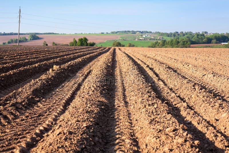 Pacchetto di terreno arabile alla stagione primaverile, terra marrone con le fette di un solco ed i camion della ruota fotografie stock libere da diritti