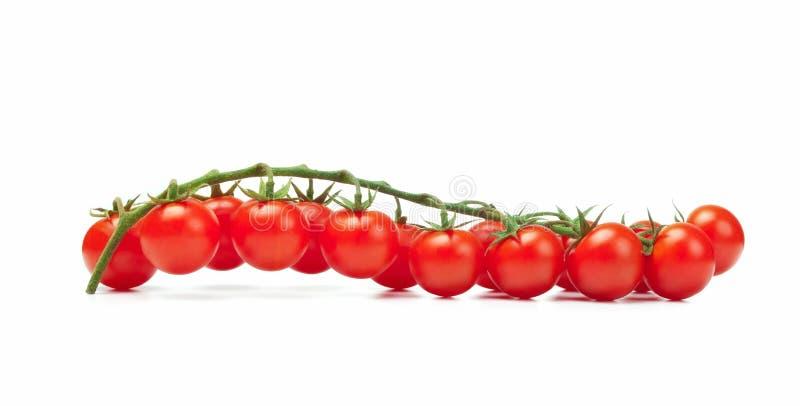 Download Pachino dos tomates foto de stock. Imagem de dieting - 29834158