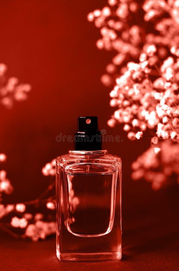 Pachnidło słój z łyszczec wokoło koralowego koloru obraz royalty free
