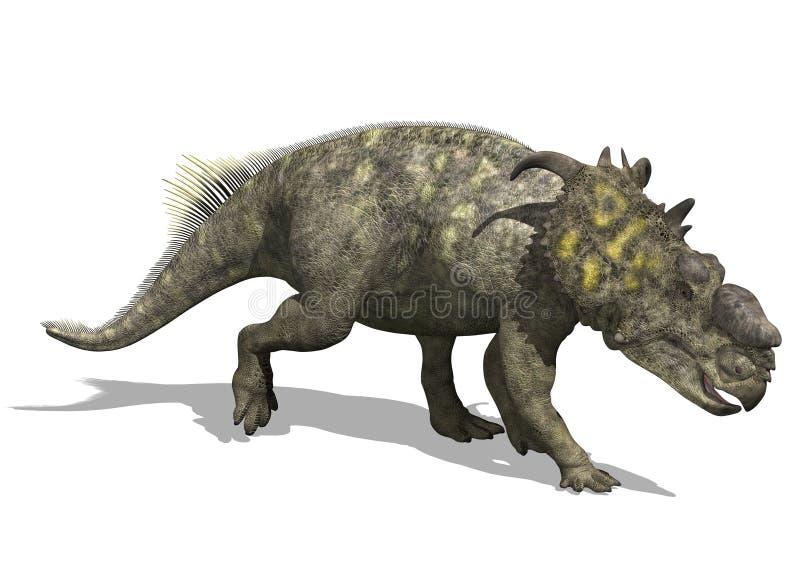 Download Pachyrhinosaurus Dinosaur stock illustration. Illustration of prehistoric - 21625257