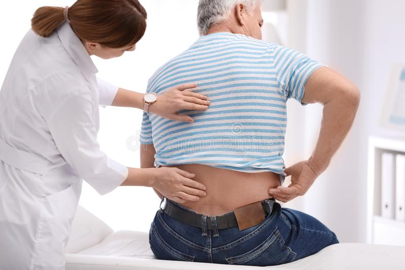 Paciente de exame do quiroprático com dor nas costas fotos de stock royalty free