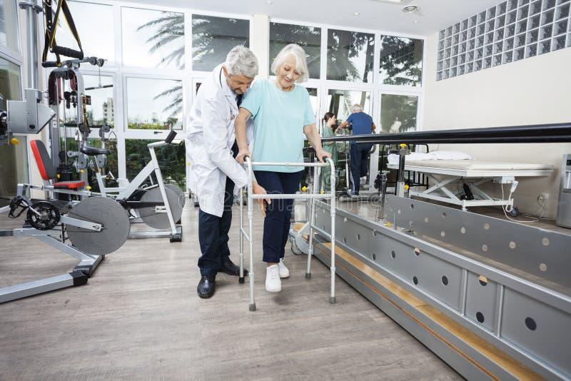 Paciente masculino de Assisting Senior Female do fisioterapeuta com caminhante foto de stock