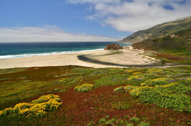 Pacific Coast Highway, 17 Mile Drive, California. At low tide royalty free stock photo