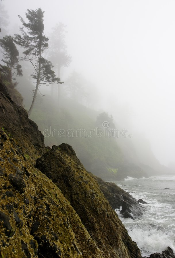Pacific Coast rugged cliff shoreline misty mystery royalty free stock image