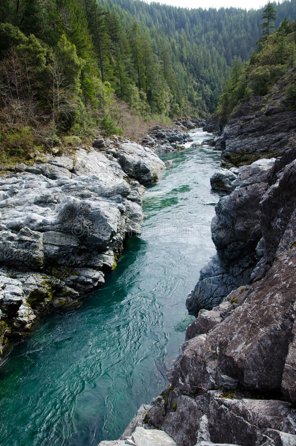 Pacific coast scenic forests. Rogue River, Siskiyou National Forest in Oregon royalty free stock images
