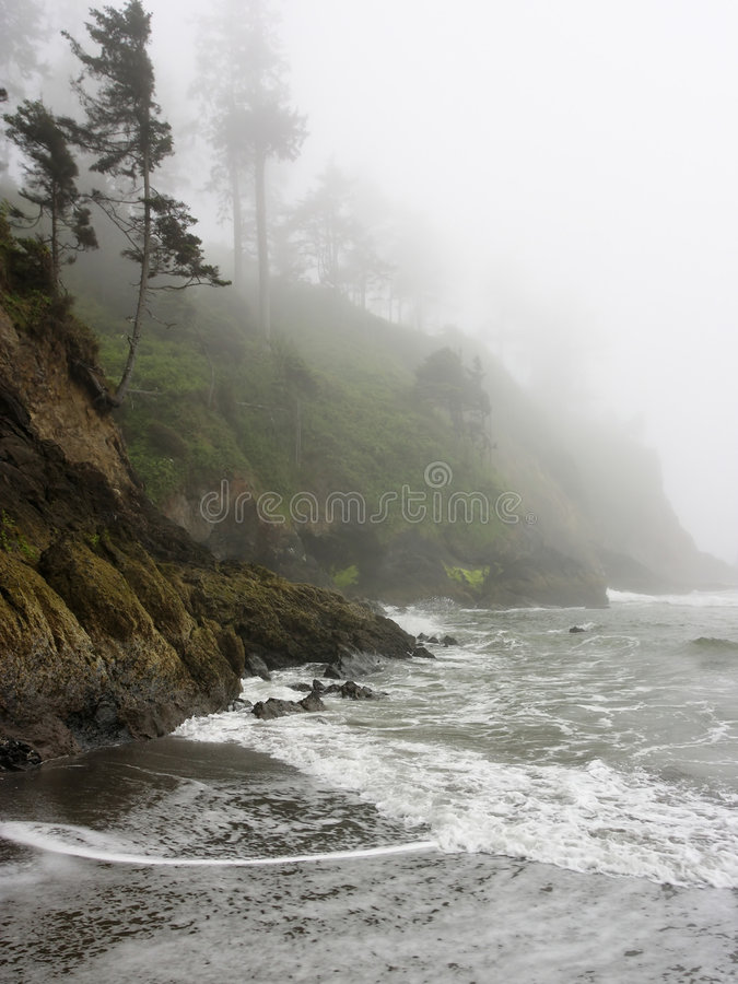 Download Pacific Coast Shoreline With Rocky Cliffs And Fog Stock Photo - Image of coastline, environment: 2539654