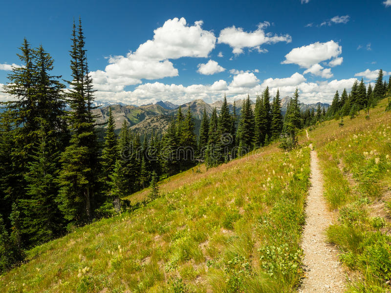 Pacific Crest Trail. The PCT, or Pacific Crest Trail as seen in Northern Washington royalty free stock photos