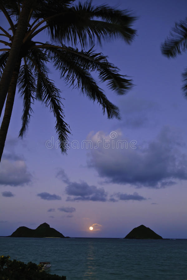 Pacific moonrise in hawaii royalty free stock photography