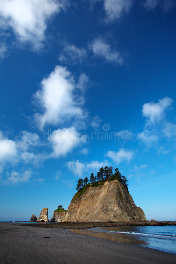 Download Pacific North West Beach stock image. Image of blue, calm - 24458431
