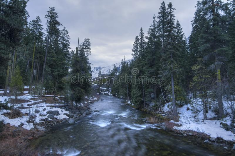 Pacific Northewest wilderness royalty free stock image